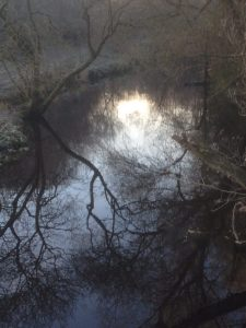 winter reflections on the Water of Leith